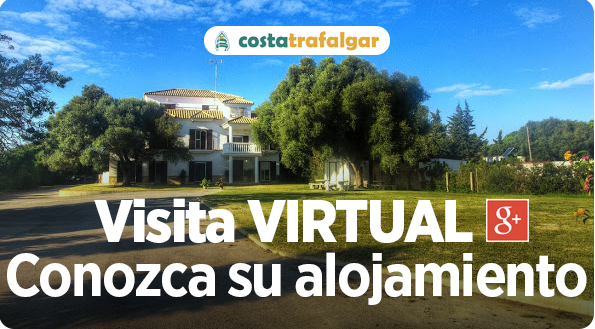 visita virtual google maps